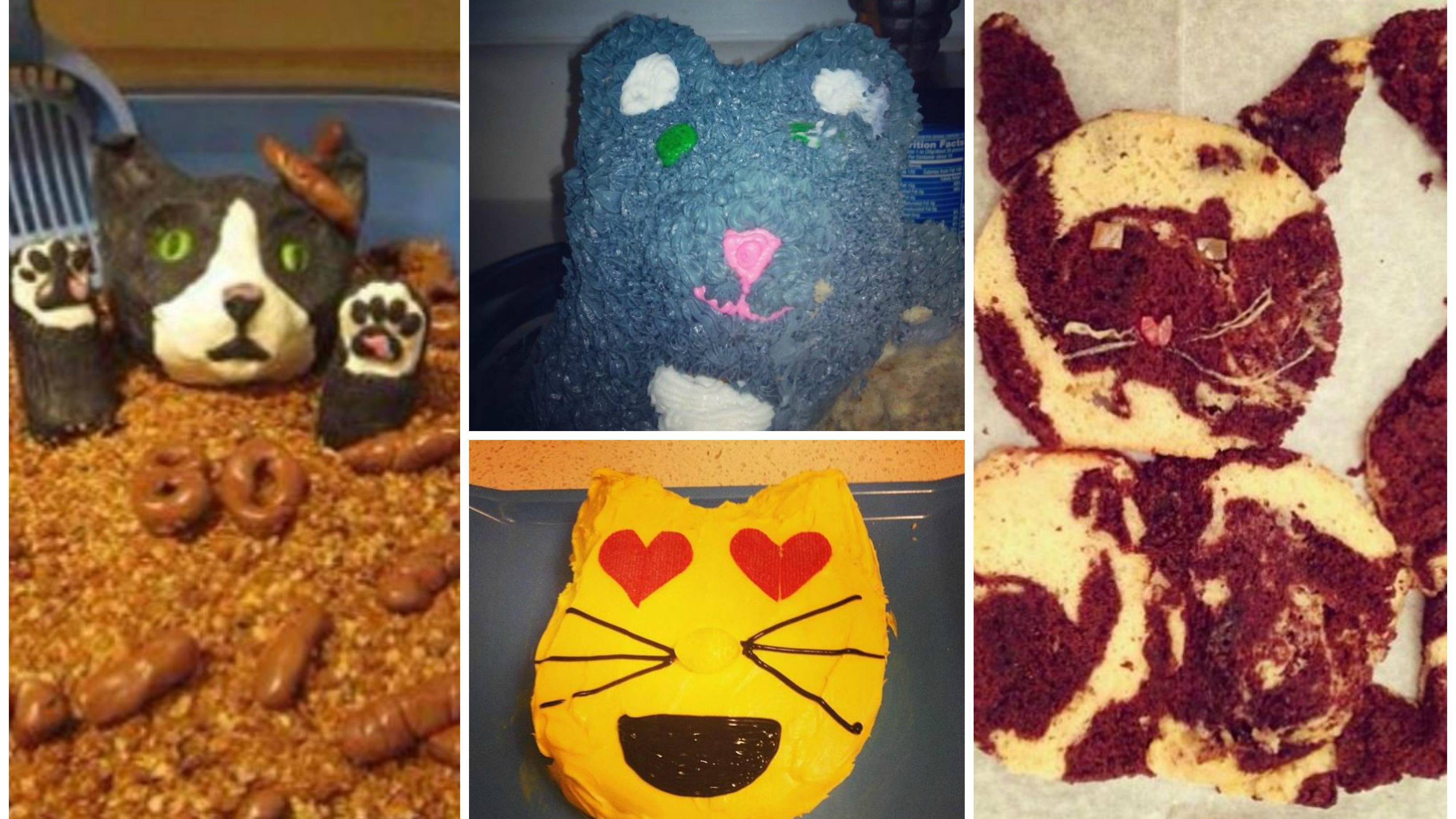 Baking fails: We think these cakes are supposed to look like cats