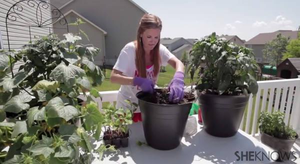 Gardening for the good of family