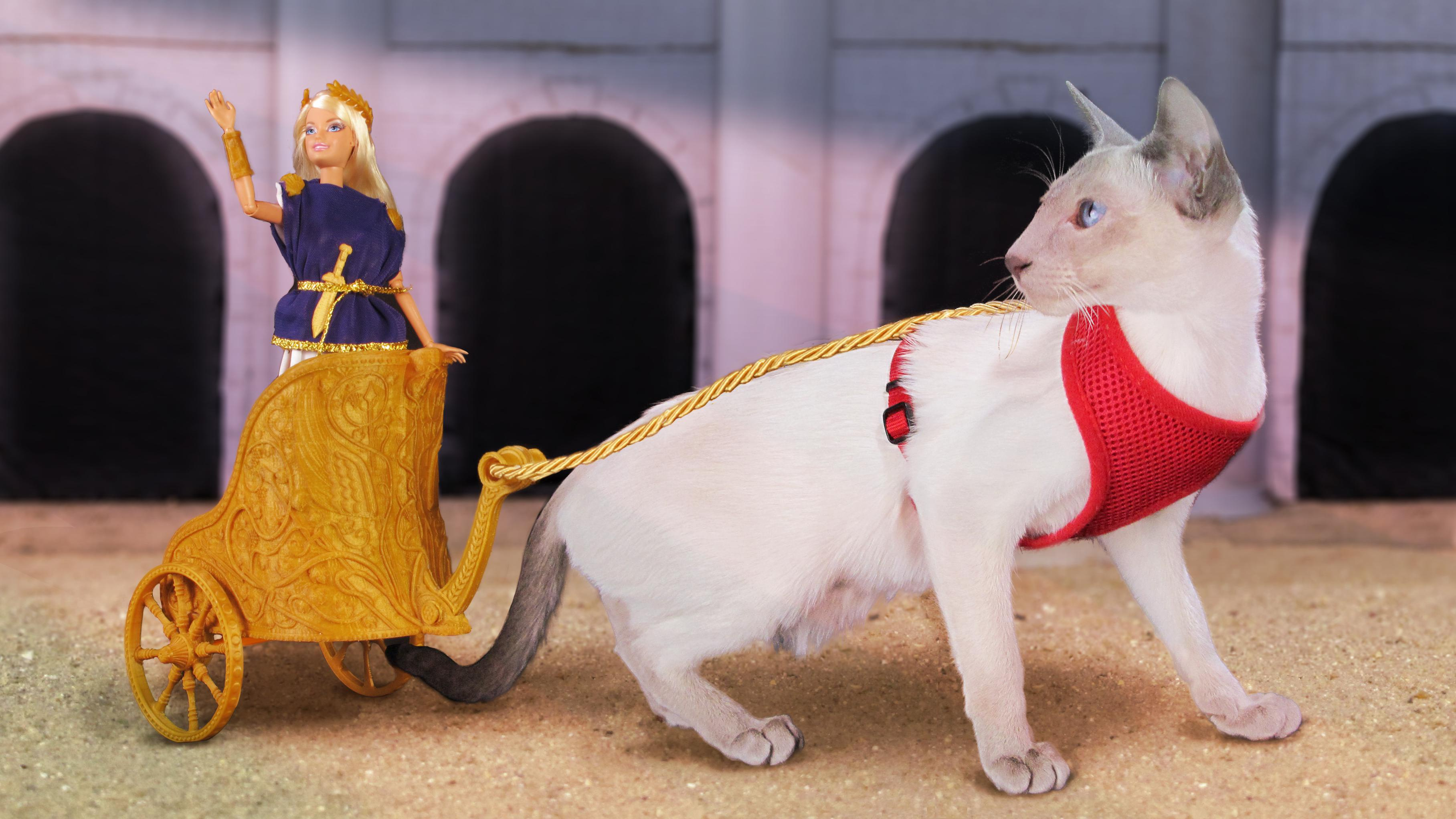 This Cat Powered Barbie Chariot Is The Best Thing That S