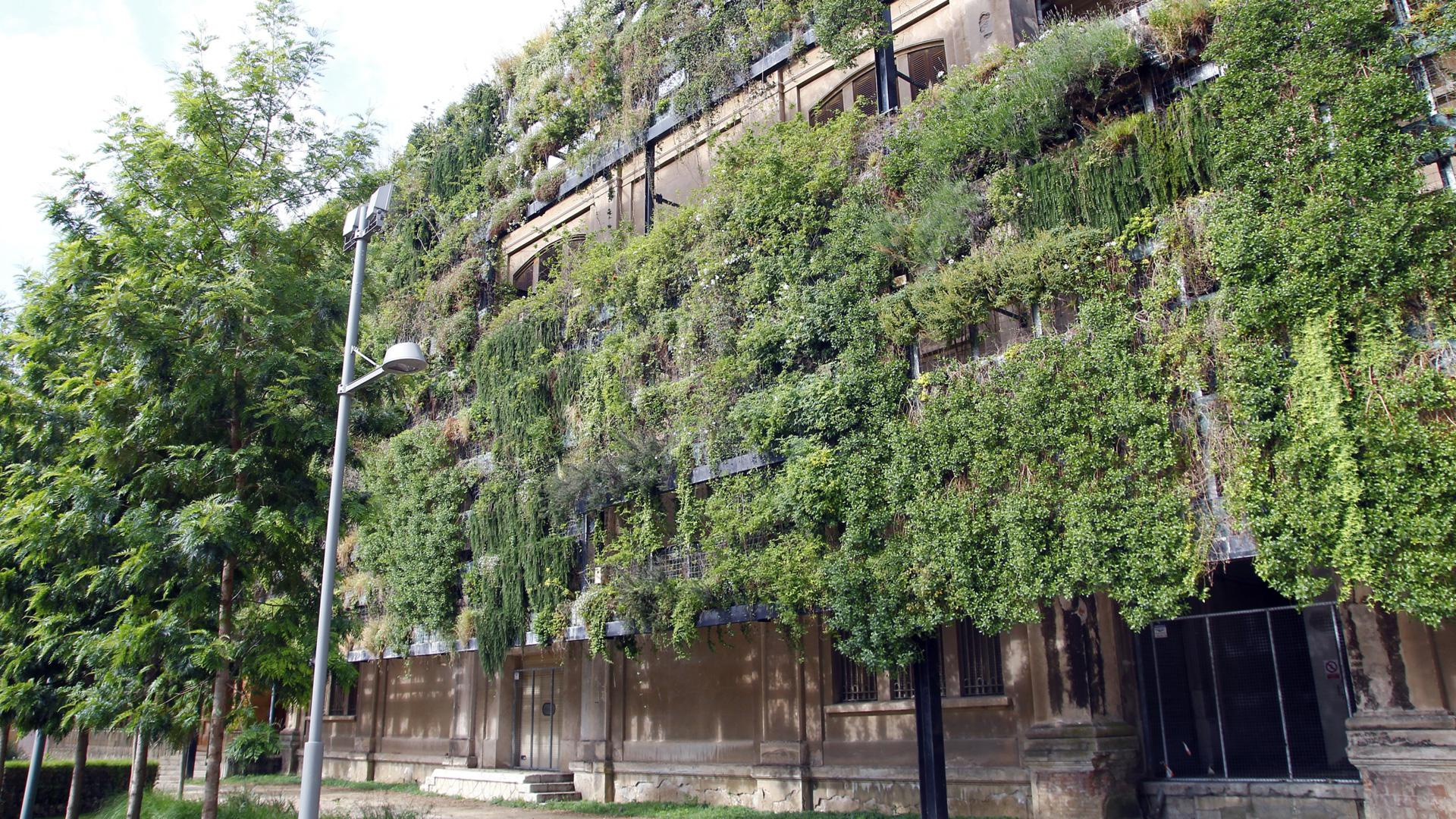 25 Vertical gardens that will take your breath away