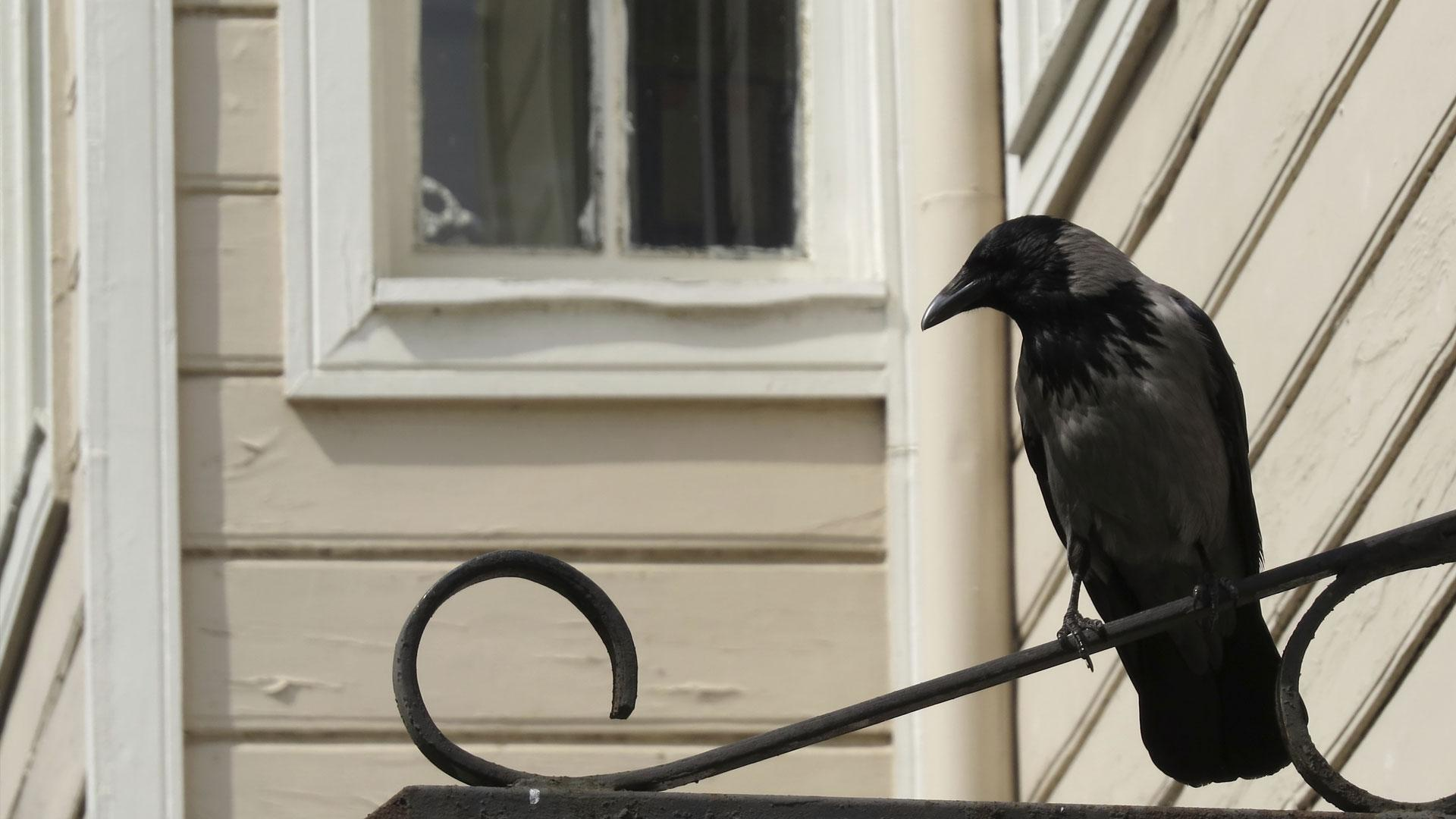 Weird superstitions about your home that will creep you out