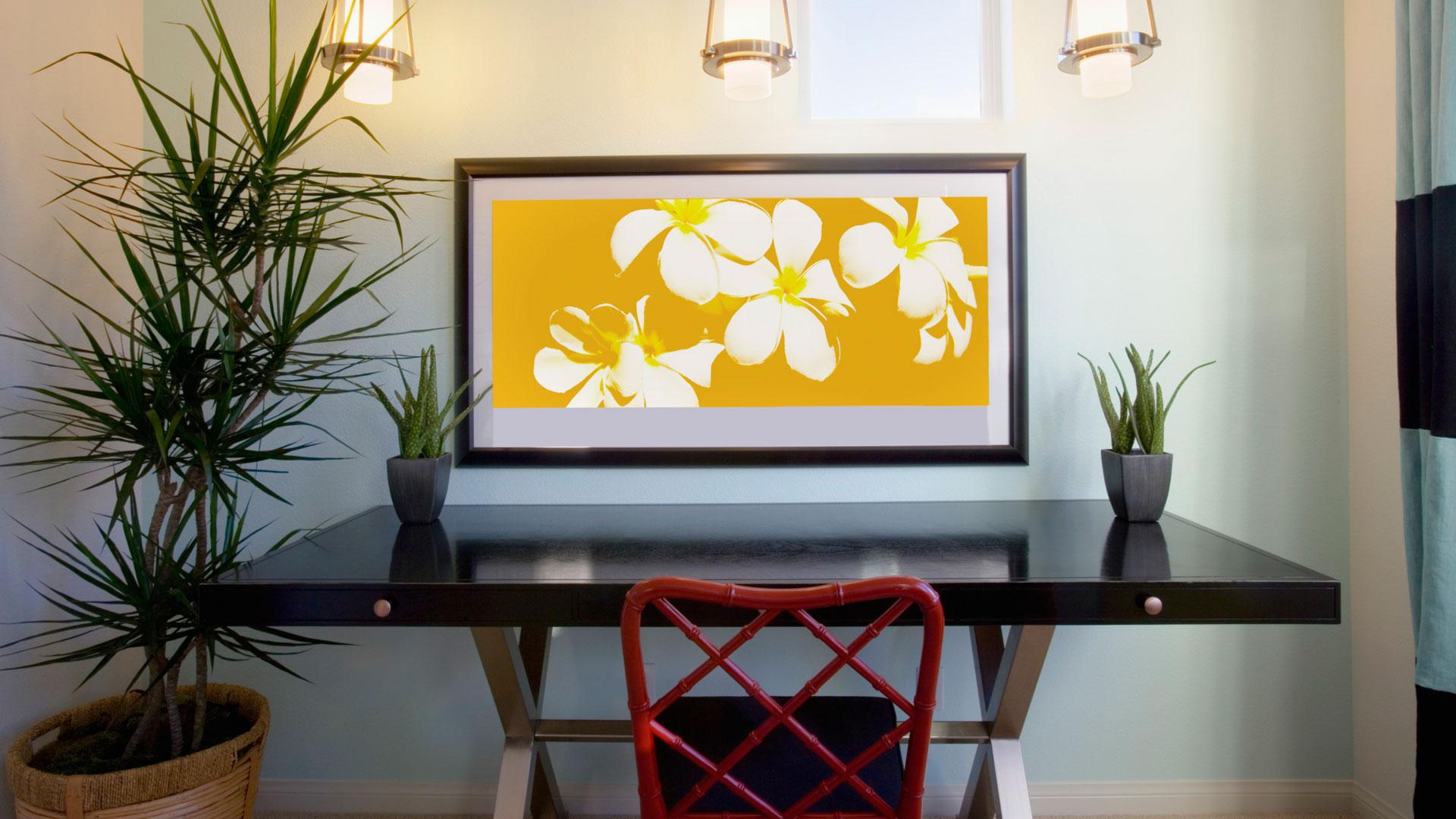 How decorating with feng shui actually makes you smarter