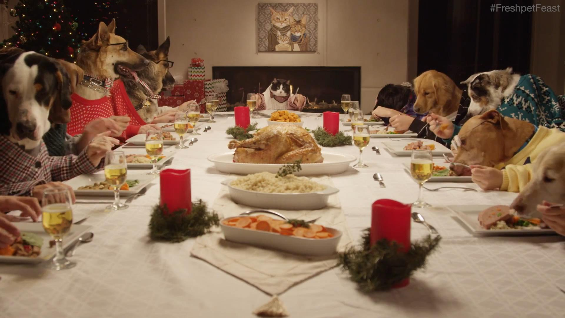 A video of 13 dogs and 1 cat eating like humans? Yes, please!